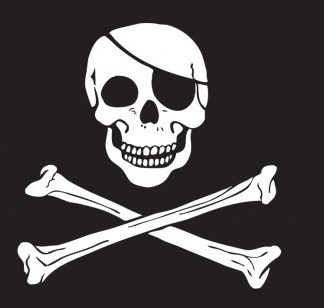 The Spirit of Air Skull & Crossbones Flag is Sold by Devon Outdoor and The Camping and Kite Centre.