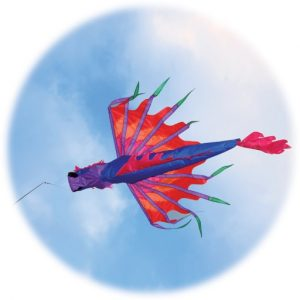 The Spirit of Air Dragon Windsock is Sold by Devon Outdoor and The Camping and Kite Centre.