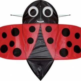 The Spirit of Air Buzzer Ladybug Kite is Sold by Devon Outdoor and The Camping and Kite Centre.