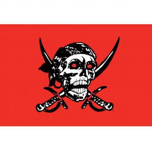 Spirit of Air Pirate Skull Red Flag